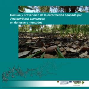 CICYTEX y el centro de investigación luso INIAV editan un manual con medidas para el control de la seca