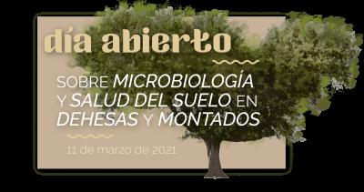 Día abierto sobre microbiología y salud del suelo en dehesas y montados (online)
