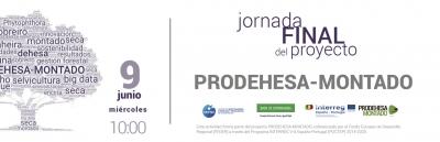JORNADA FINAL DEL PROYECTO PRODEHESA-MONTADO
